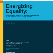 Energizing Equality: Unlocking the potential of women's participation in sub-Saharan African energy utilities